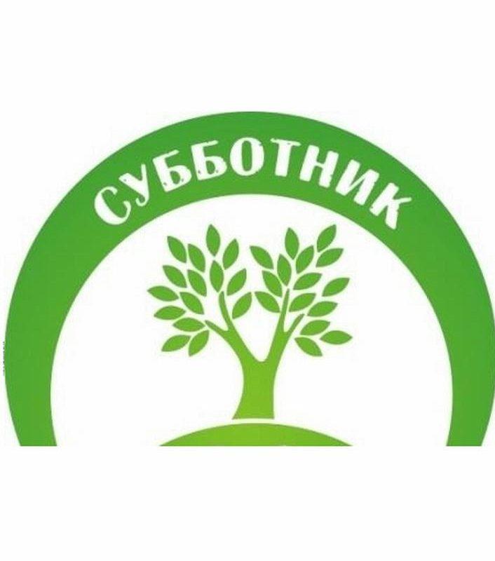 Месячник чистоты завершился в Егорлыкском районе субботником