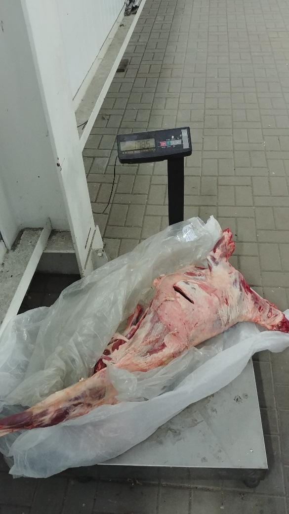 Мясопродукты, перемещаемые в отсутствии ветеринарных документов возвращены на территорию Украины