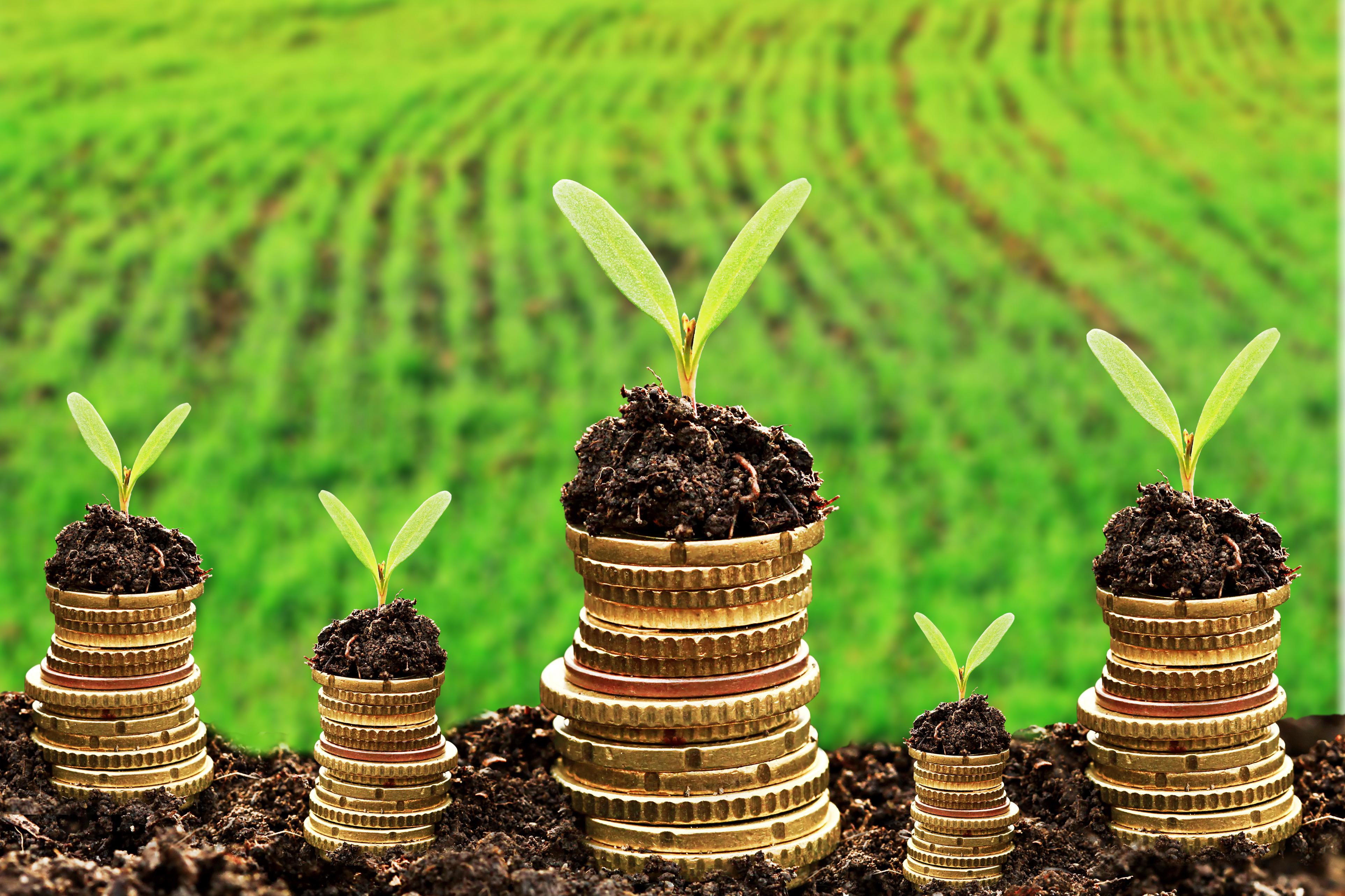 Выгодные займы для сельхозтоваропроизводителей района