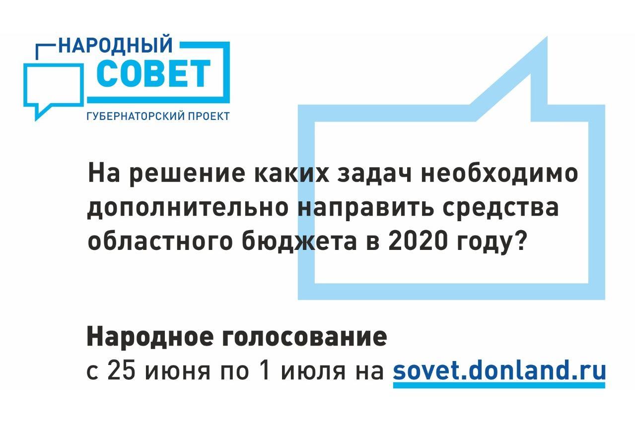 Подведены первые итоги голосования в рамках губернаторского проекта «Народный совет»