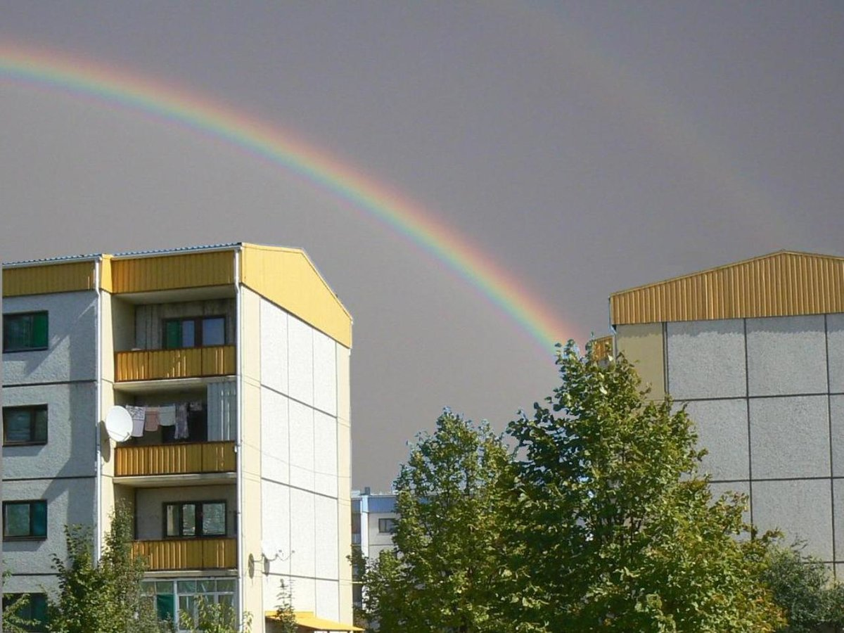 Ответ Главы: о квартирах в Городке