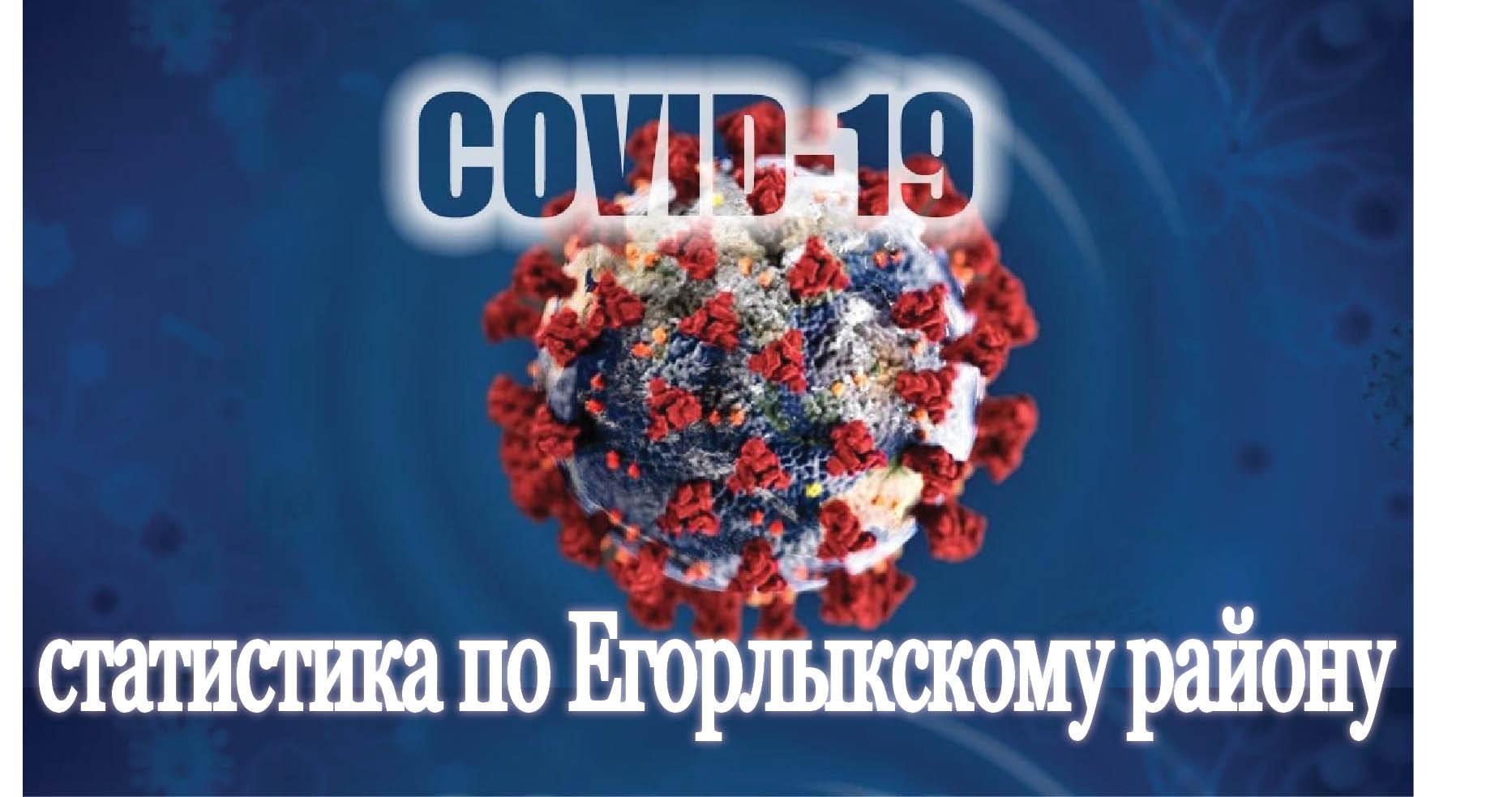 В Егорлыкском районе на 21 октября ни одного случая коронавируса