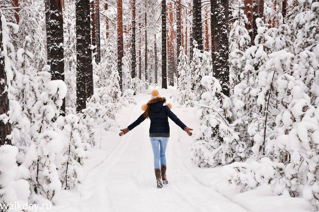Какой будет зима в этом году?