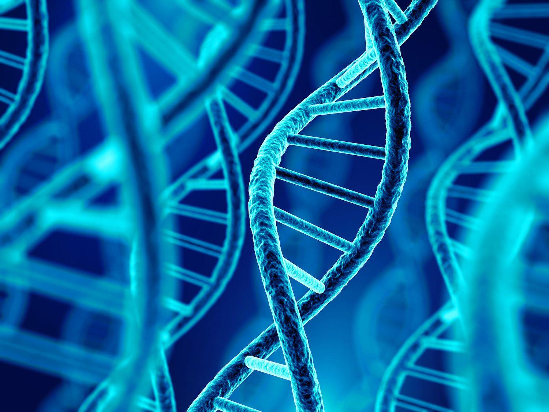 В базу МВД могут быть внесены новые технологии ДНК