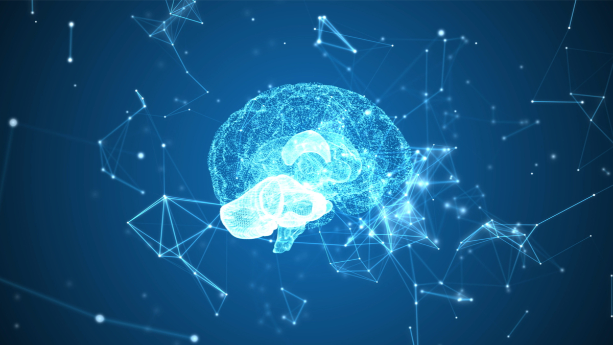 На Дону школьников научат работать с нейросетью