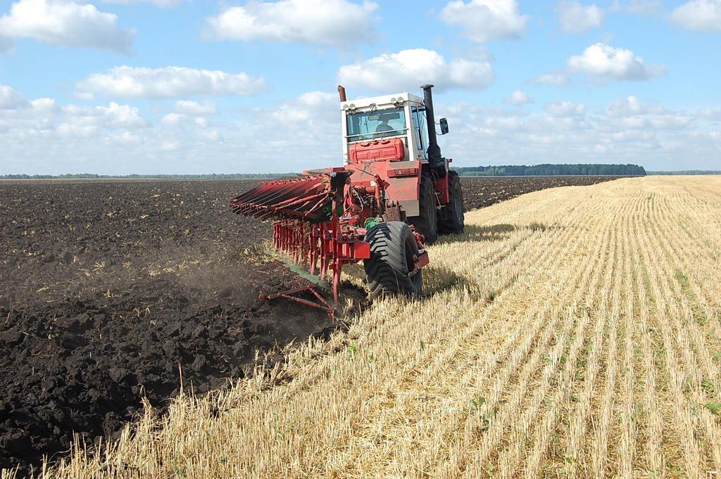 На Дону финишировали осенние полевые работы