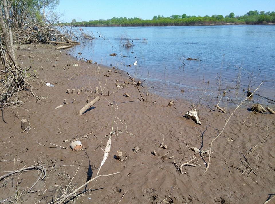 Почему в Егорлыкском районе нет воды в реках?