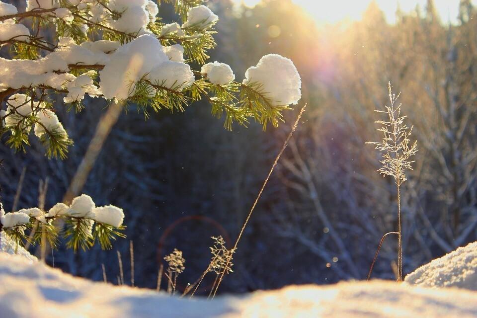 Чередование оттепелей и сильных морозов зимой в России
