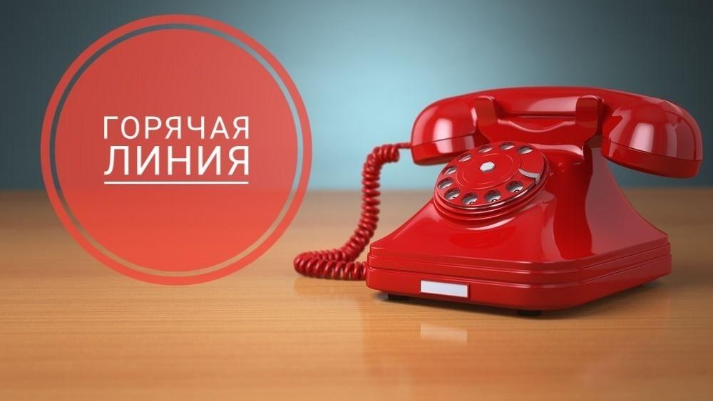 Телефоны «горячей линии» по вопросам предоставления мер соцподдержки на Дону