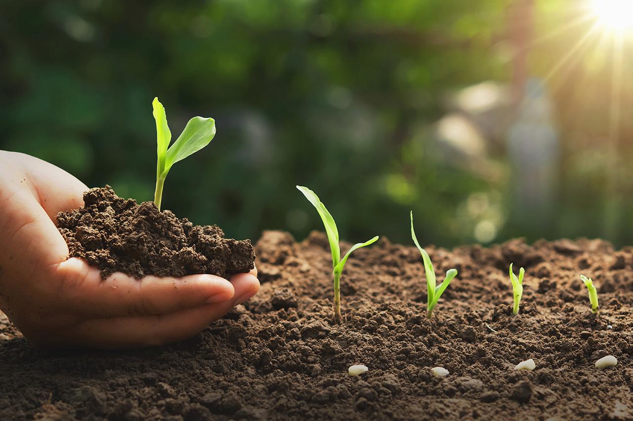 Егорлыкский район готовится к агрохимическому обследованию