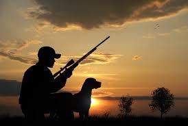Правила охоты изменились