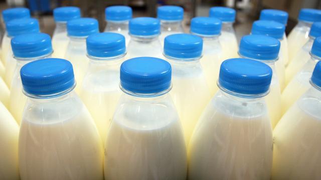 Опасную молочку изъяли из продажи в Ростовской области