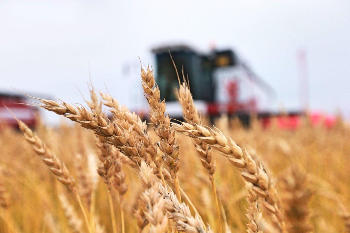 Президент РФ наградил аграриев Егорлыкского района