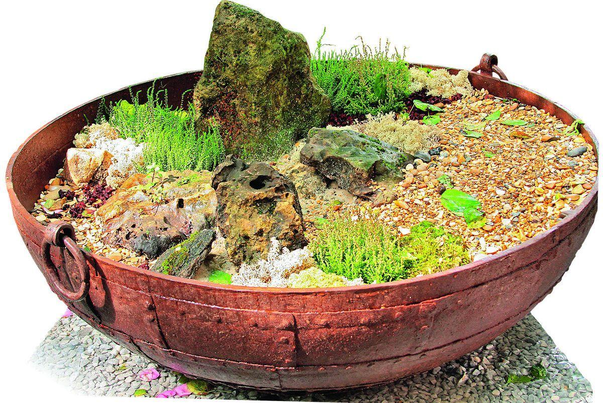 Новый способ украсить двор для егорлычан