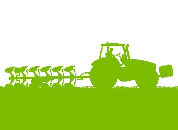 Егорлыкские фермеры надеются на хорошую погоду