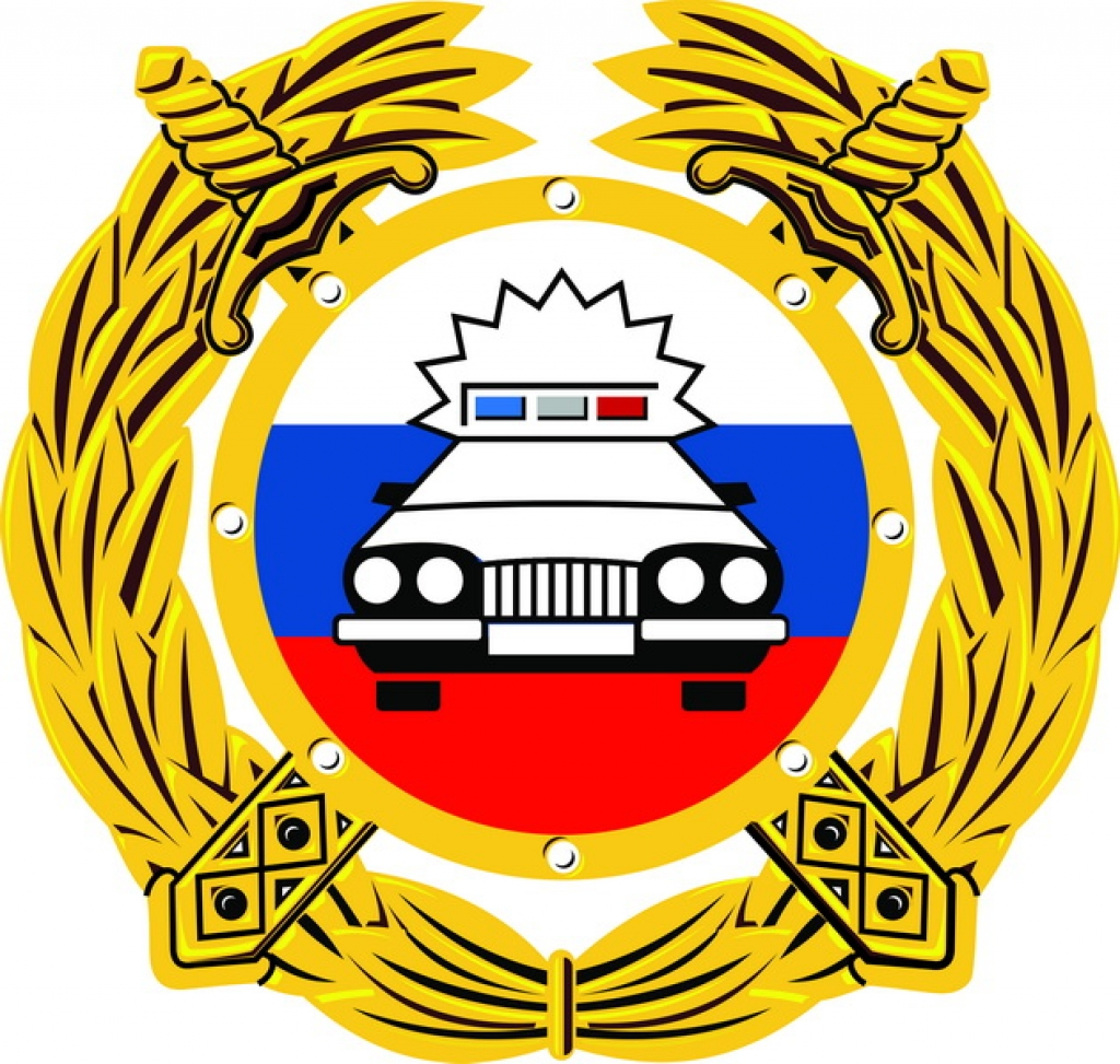 Что проверит ГИБДД в Егорлыкском районе
