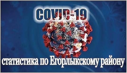 Статистика по коронавирусу в Егорлыкском районе на 21 июля
